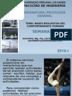 BASES BIOLOGICAS DEL COMPORTAMIENTO 2016-I (1).pptx