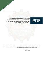 Sistemas Silvopastoriles en Las Comunidades de Jalisco
