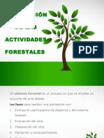 Actividadesforestales 141012142356 Conversion Gate02