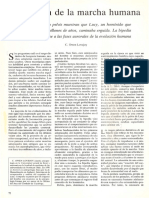 Lovejoy, O, Evolución de la marcha humana (1) (1).pdf