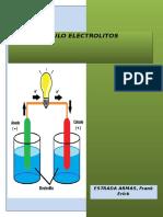 INFORME 4 electrolitos.docx