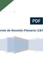 Informe Reunión Plenaria.docx