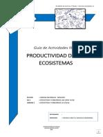 1°-Guía-Actividades-11-Productividad-de-un-ecosistema (1)
