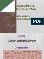 Conservación Del Mucilago de Linaza
