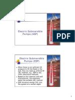 Electric Submersible Pumps (ESP).pdf