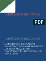 LINFOCITOS REACTIVOS