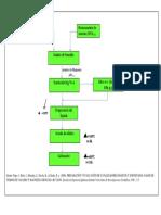esquema de preparacion .pdf