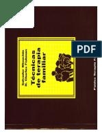 Libro Salvador Minuchin Tecnicas de Terapia Familiar