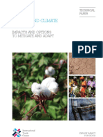cotton-and-climate-change.pdf