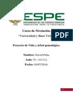 Plan de Vida-David Peña. ESPE.