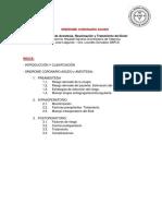 SARTD-PROTOCOLOS_DE_CUIDADOS_CRITICOS-Sindrome_Coronario_Agudo.pdf