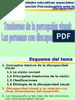 Sesion 9-Dificultades de Perc Visual