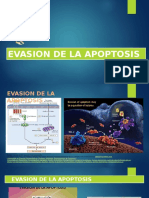 lander apoptosis ppt.pptx
