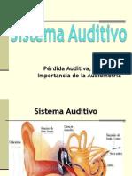 Sesion 10-Dificultades de Perc Auditiva