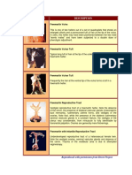 microsoft word - freemartin photogallery