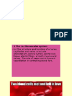 cardiovascularsystem