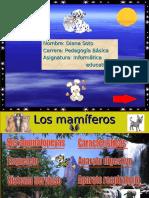 los mamiferos.pps