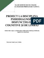 Proiect de Seminar Disfunctii Cognitive Si de Limbaj