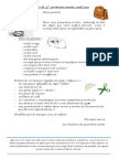 Classes de 4ème primaire.pdf