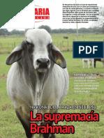 PECUARIA Y NEGOCIOS - ANO 12 - NUMERO 142 - MAYO 2016 - PARAGUAY - PORTALGUARANI