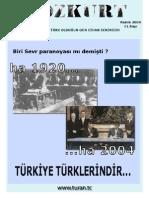 bozkurt11