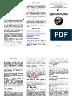 Triptico Analisis de La Ciencia y La Tecnologia en Venezuela