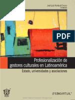 Profesionalizacion de Gestores Culturales en Latinoamerica