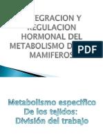 Regulacion Hormonal Del Metabolismo