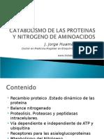 CATABOLISMODELASPROTEINASYNITROGENODEAMINOACIDOS2010