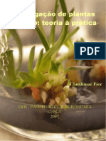 Apostila plantas in vitro otima.pdf