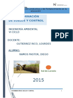 Monografía -  Sol de Laredo, 29-10-15.docx