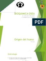 Bioquimica Osea