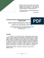 Mensaje Bioq13 V37p275-291 Patricia Coello