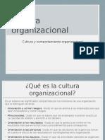 Cultura Organizacional según Robbins