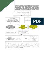 P2G Causal Model