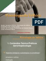 Compilação de Psicologia Da Velhice