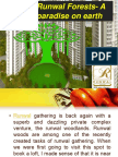 Runwal forest real estate  A paradise on earth