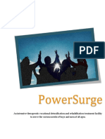 powersurge booklet