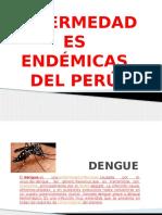 Enf. Endemicas