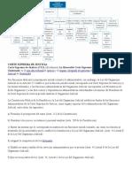 CORTE SUPREMA de JUSTICIA.docx Organigrama y Funcines de Cada Bloque
