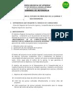Tdr Consultoria Estudio de Mercado.revsiones