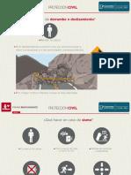 Proteccion Civil.pdf