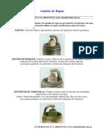 analisisdebujias2.pdf