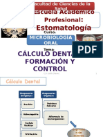 Clase 2 Cálculo Dental