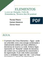 manual 05elementos2e3-acupuntura