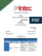 Rocas Igneas1234.docx