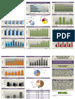 Boletim Informativo Do Setor Mineral 2016