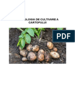 Tehnologia de Cultivare a Cartofului