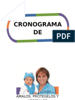 CRONOGRAMA DE ACTIVIDADES PTI IRAs.docx