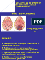 TEJIDO CENECTIVO